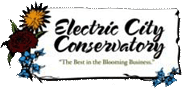 Electric City Conservatory